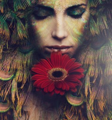 Artistic Beauty - Nature & Beauty